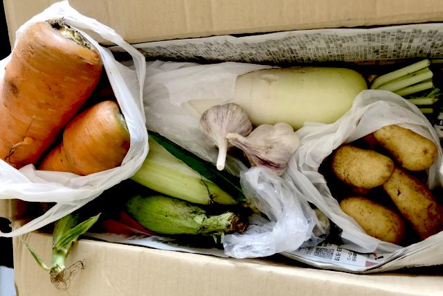 農家直送新鮮野菜